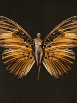 butterfly-psyche-naked-woman-wings-cool-art-chicquero
